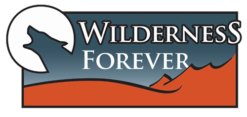 wilderness forever 01