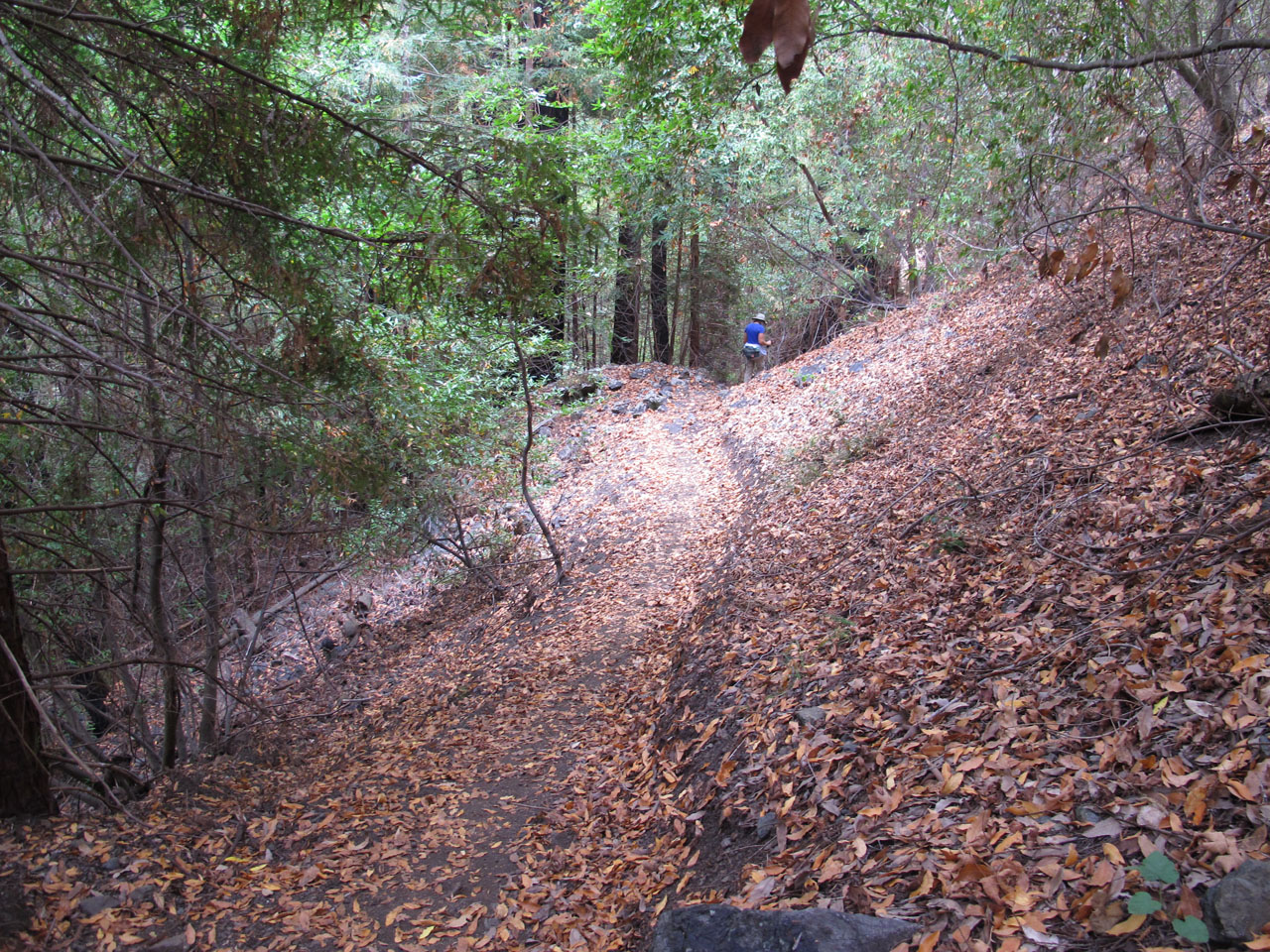 Reworked Trail to Villa Creek Camp.jpg